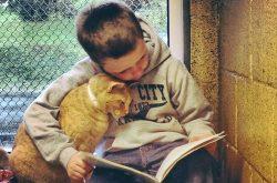 Leggere:  Medicina per l'anima*